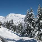 Winterliches Meran 2000