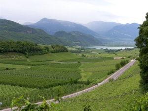 Weinstrasse Suedtirol